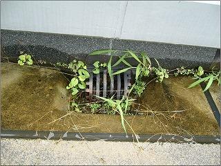 RC(鉄筋コンクリート) ありがちな原因で水漏れ
