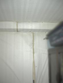 室内の壁紙が大きく剥がれている様子